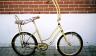 Banana Seat Bike