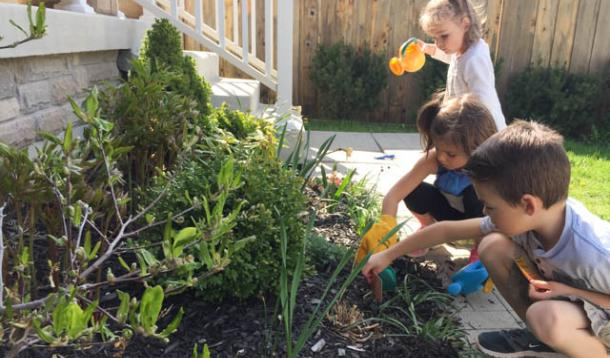 How to Get Your Little Ones Involved In Bringing Back the Bees