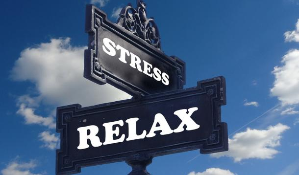 Put down your phone and release your stress   YummyMummyClub.ca