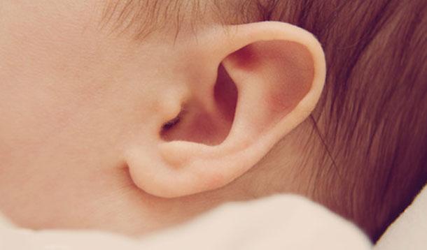baby ears
