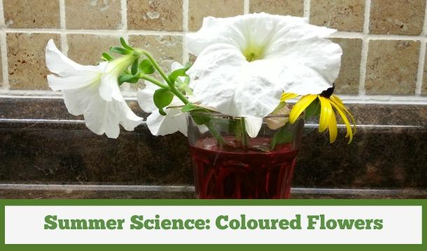 How To Make Colored Flowers