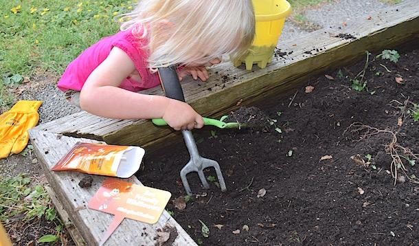 How to Raise Bee-Friendly Kids in a Bee-Friendly Environment