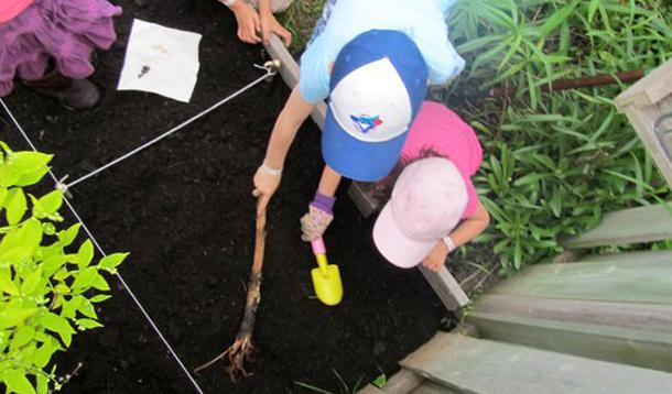 Building A Garden With Kids