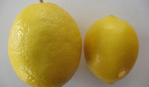 What The Heck Are Meyer Lemons?
