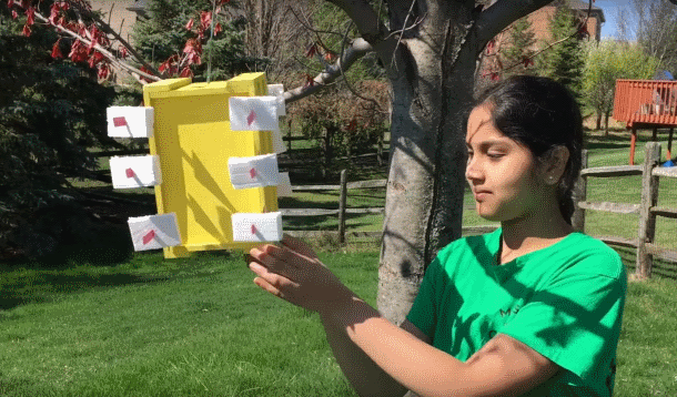 13 Year old Girl engineer