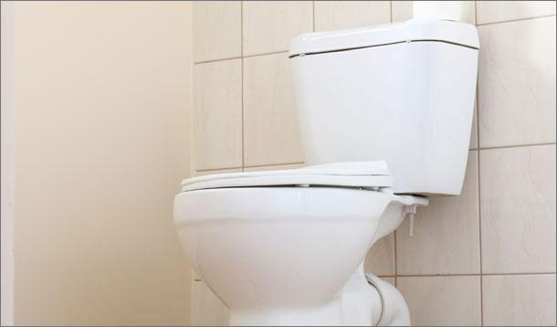 Best Natural Way To Unclog A Toilet