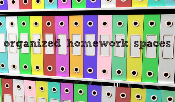 Organized binders on a shelf