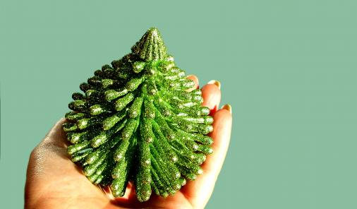 Quirky Christmas Allergens to Watch Out For -Not to be the Grinch who stole Christmas, but the sparkle and joy of the holidays also come with many hazards to those with allergies. | Health | YummyMummyClub.ca