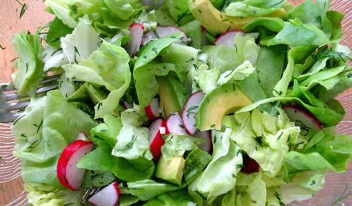 Butter Lettuce, Avocado, Radish Salad with Mustard Dressing Recipe