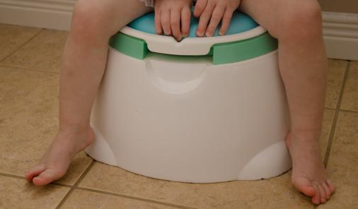 The Adventures & (Mis)fortunes of Potty Training a Toddler