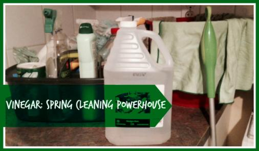 Vinegar: A Spring Cleaning Powerhouse