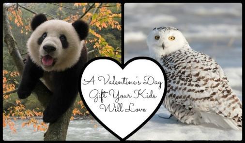 A Valentine's Day Gift For Older Kids