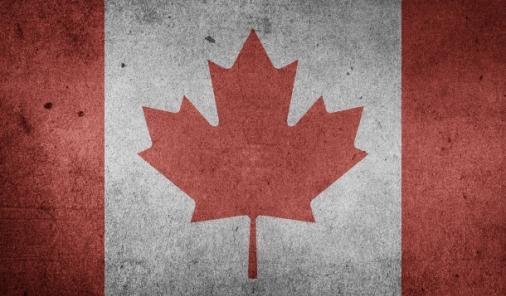 Canada Day Party Ideas   YummyMummyClub.ca