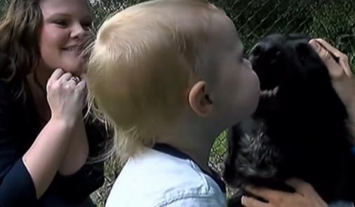 dog saved child from abuse
