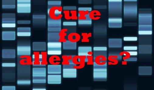 cure_for_allergies