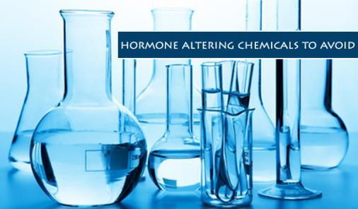 The Dirty Dozen List of Endocrine Disruptors