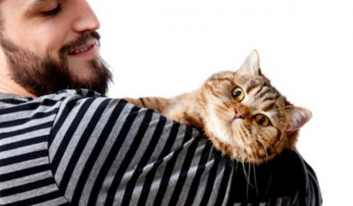 A groundbreaking new survey says owning a cat is considered to be lady-loving kryptonite. | Relationships | YummyMummyClub.ca