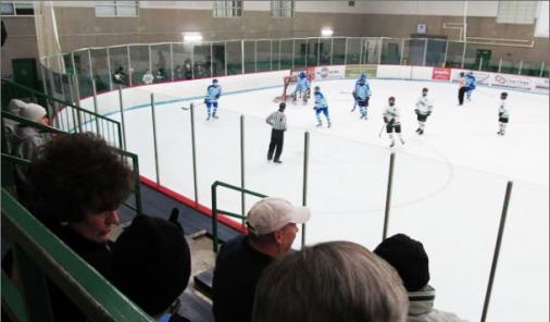 How to Survive and Enjoy Hockey Season