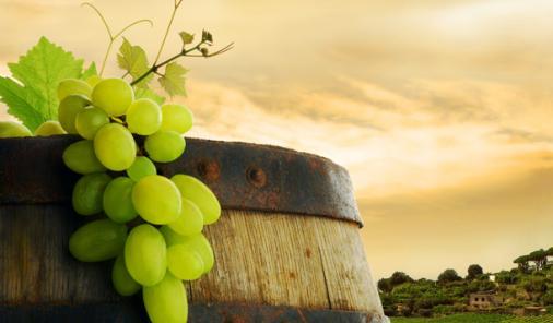Four Italian Wines For Women