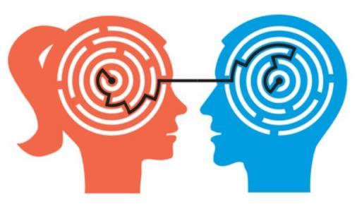 Is there a male and female brain?   YummyMummyClub.ca