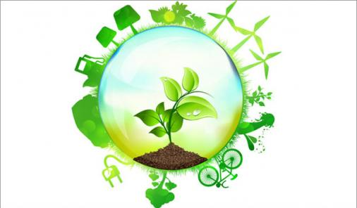 15 Simple Green Actions to Take in 2015