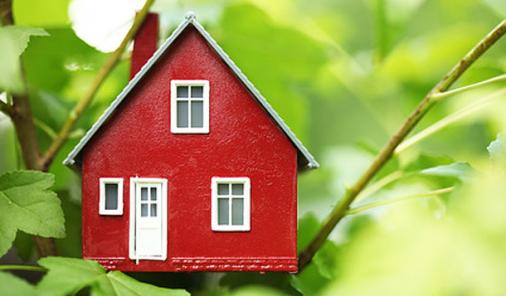 5 Surprising Ideas to Make Your Home More Eco-Friendly