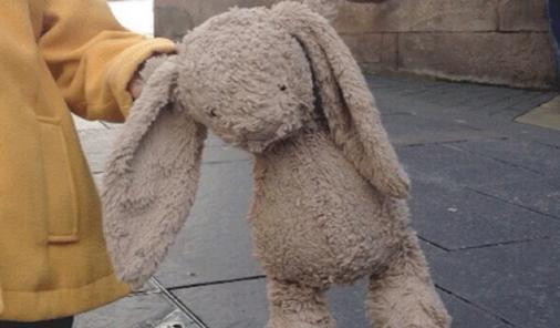 lost rabbit
