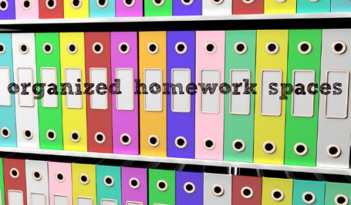 Organized binders on a shelf