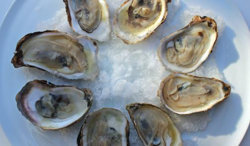 Freshly shucked oysters have long been considered a deliciously seductive food