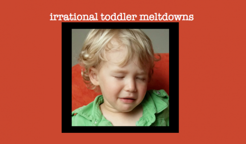 toddler, tantrum, meltdown, irrational, toddler irrational, funny kids, two years old, parenting, fits, crying,
