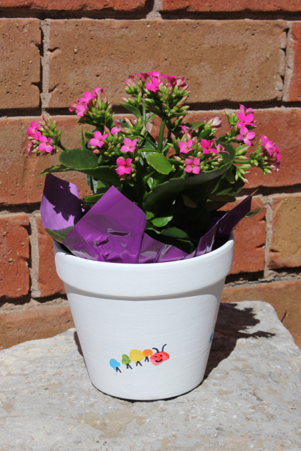 Plant Pot Painting Ideas For Kids