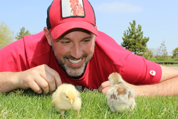 Have a dream of owning chickens and getting fresh eggs out of your backyard? Want urban chickens?