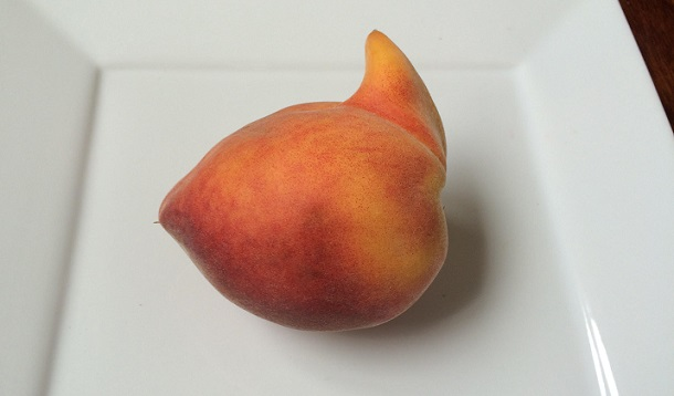 Don T Be A Produce Poser The Ugliest Fruits Make The