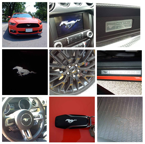 2015 Ford Mustang collage