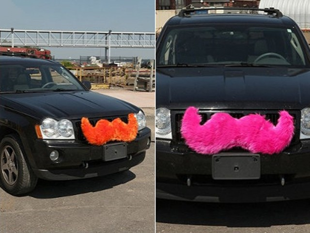 Car Accessory carstaches
