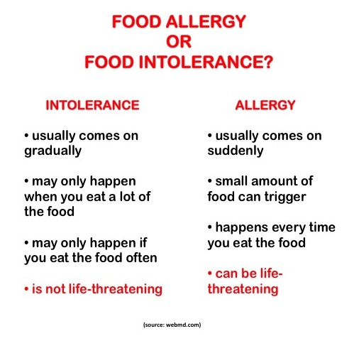 Image result for free image for food intolerances