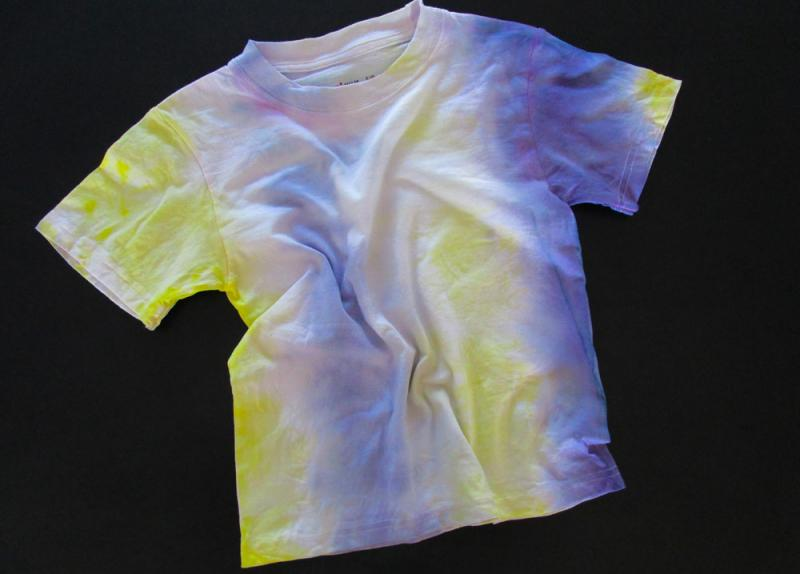 T-shirt tie dyed using blueberries and mustard.