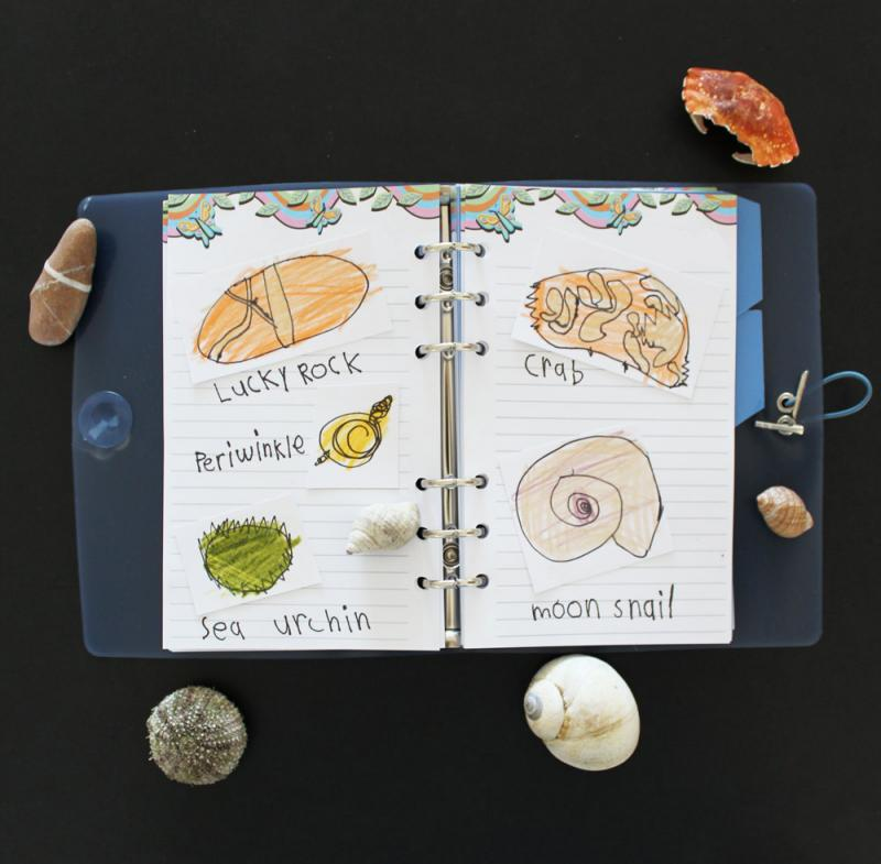 You can make your own sketches in the Maplelea Girl journals.
