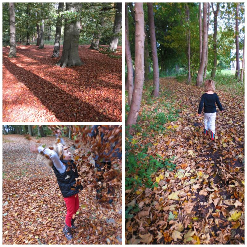 Autumn walks and throwing leaves.