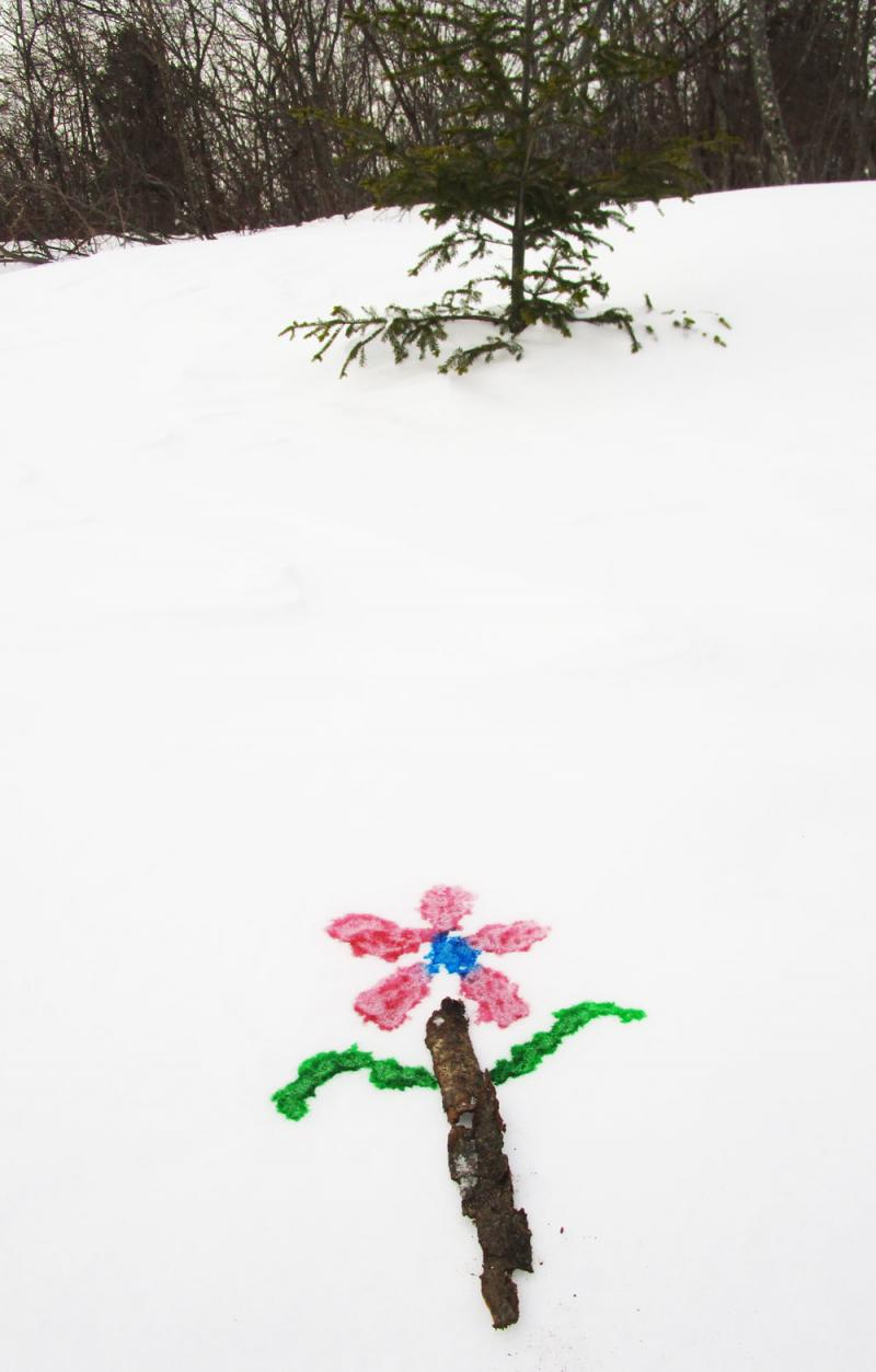 Snow flower picture